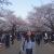 qian_hui_d._elena